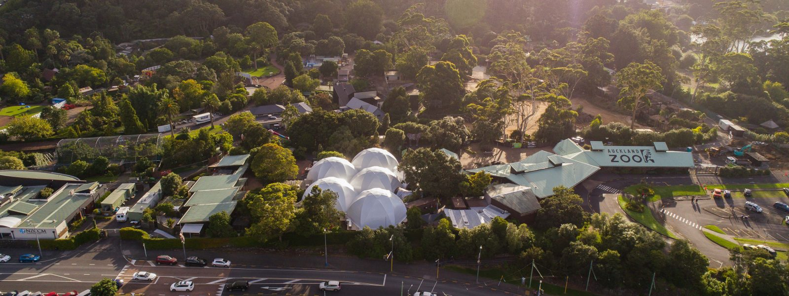 BUG LAB – AUCKLAND ZOO - Skyview