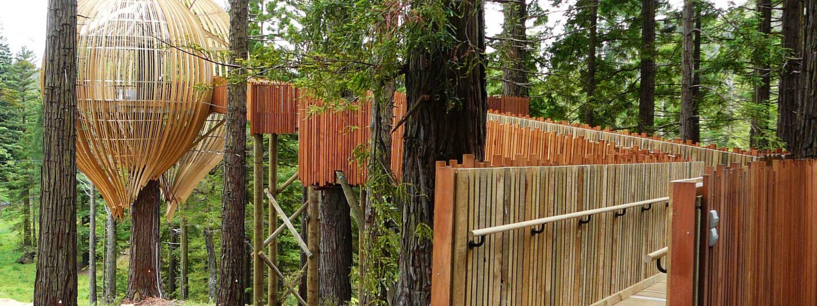 Treehouse-Daytime-with-walkway